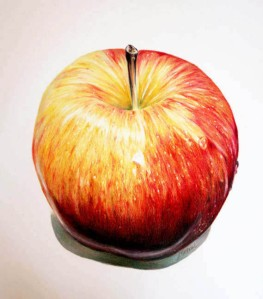 Coloured Pencil Apple 9 Finished