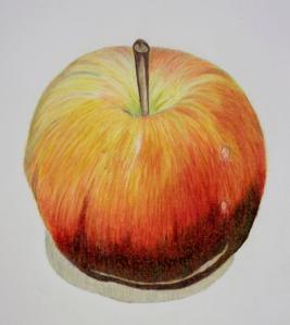 Guelph Workshop 8 November 13 Jonathon's Apple