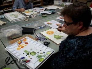 Joan working on her Zinnia