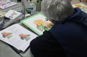 Roz working on her Zinnia